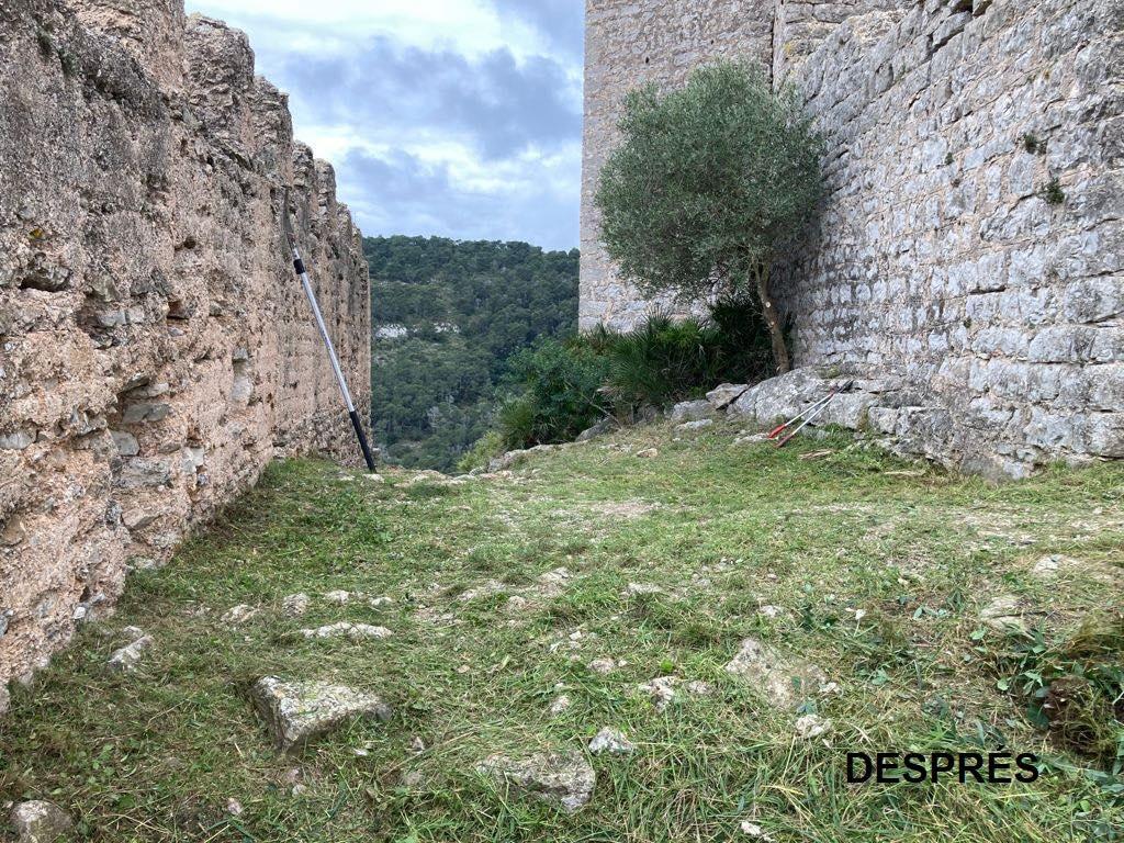 Diputación limpia y desbroza el Castillo de Santa Magdalena